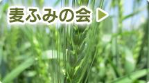 麦ふみの会
